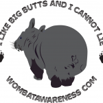 Wombat awareness